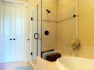 Dallas Texas Frameless Shower Door